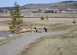 Picture of Exeter Valley accessible trail