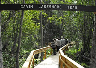 Picture of Gavin Lake accessible trail